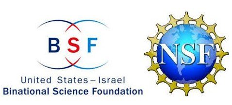 Our group was awarded the NSF-BSF grant together with the teams of UMass Amherst: Ashwin Ramasubramaniam, Todd Emrick and Mike Barnes.